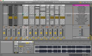 MultiTrack BACKING TRACKS